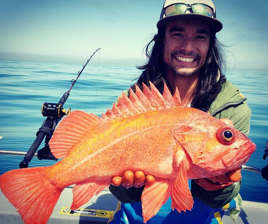 rockfish-charter-northwind-hero
